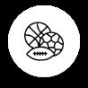 sports proposés