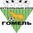Logo Gomel