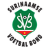 logo Suriname