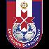 Logo FK Saransk