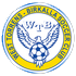 Logo Adelaide Galaxy