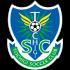 Logo Tochigi SC