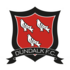 Logo Dundalk