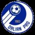 Logo Dalian Professional FC