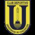 Logo Universidad de Concepcion