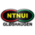 Logo NTNUI