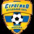Logo Strogino