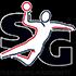Logo Flensburg-Handewitt