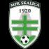 Logo Skalica