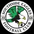 Logo Southside Eagles