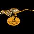 Logo Cheetahs