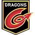 Logo Newport Dragons